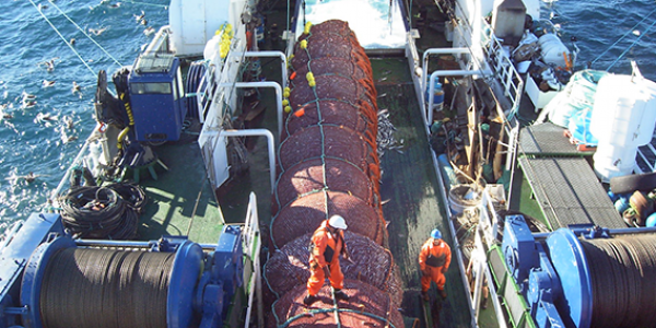 Bottom Trawls